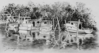 Boats Wynnum Creek